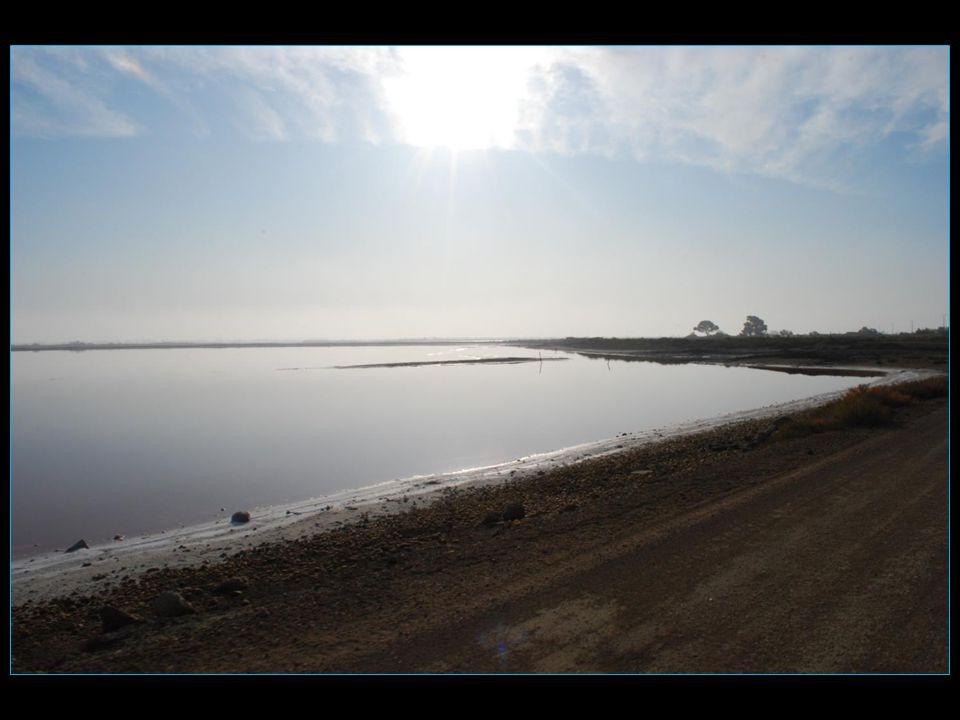Unique en Europe, entre Sel et Mer, au coeur dune nature sauvage, découvrons le plus vieux Salin de la Méditerranée