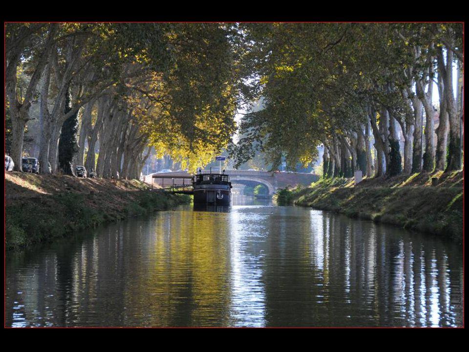 Retour par Le canal de Brienne Long de 1560 mètres