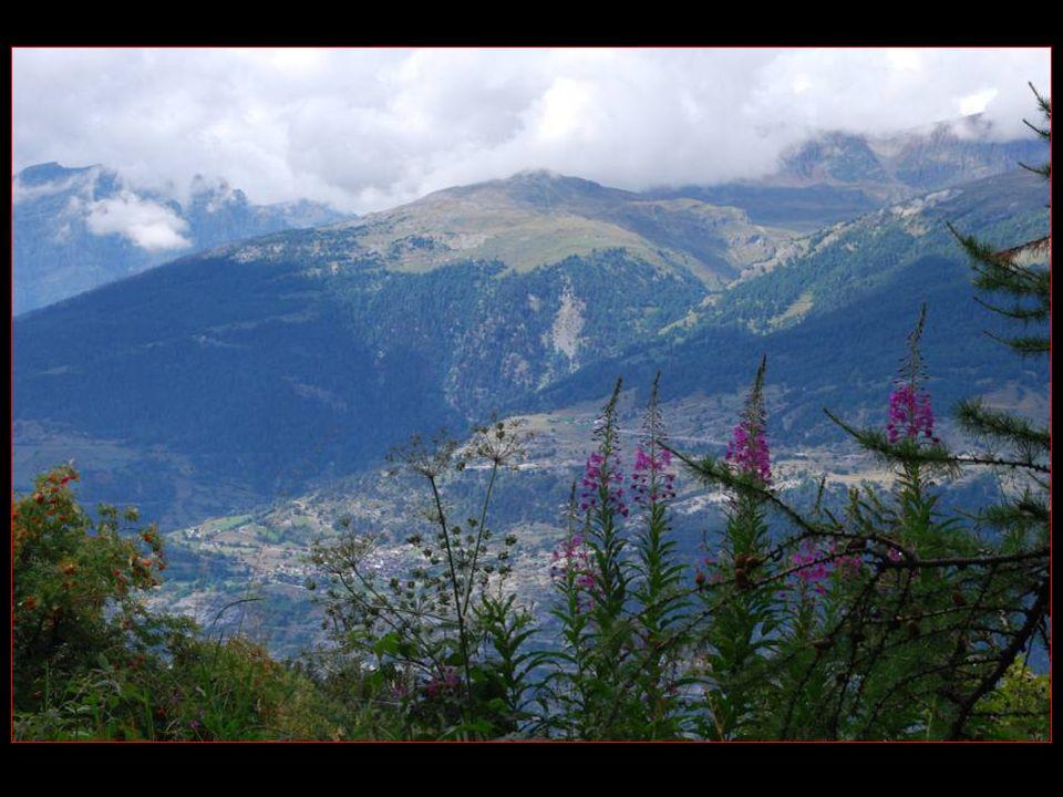 Allons encore plus Haut Pour admirer La Vue depuis le haut plateau DObermatt Sur Ergisch