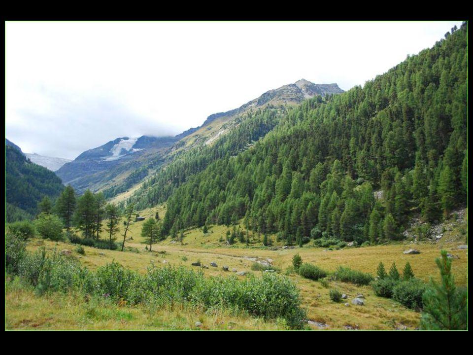 Vallée méridionale secrète, le Turtmanntal