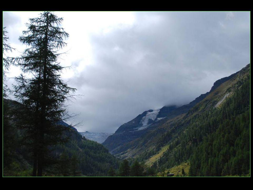 Vue sur le glacier de Turtmann tout en fond de vallée