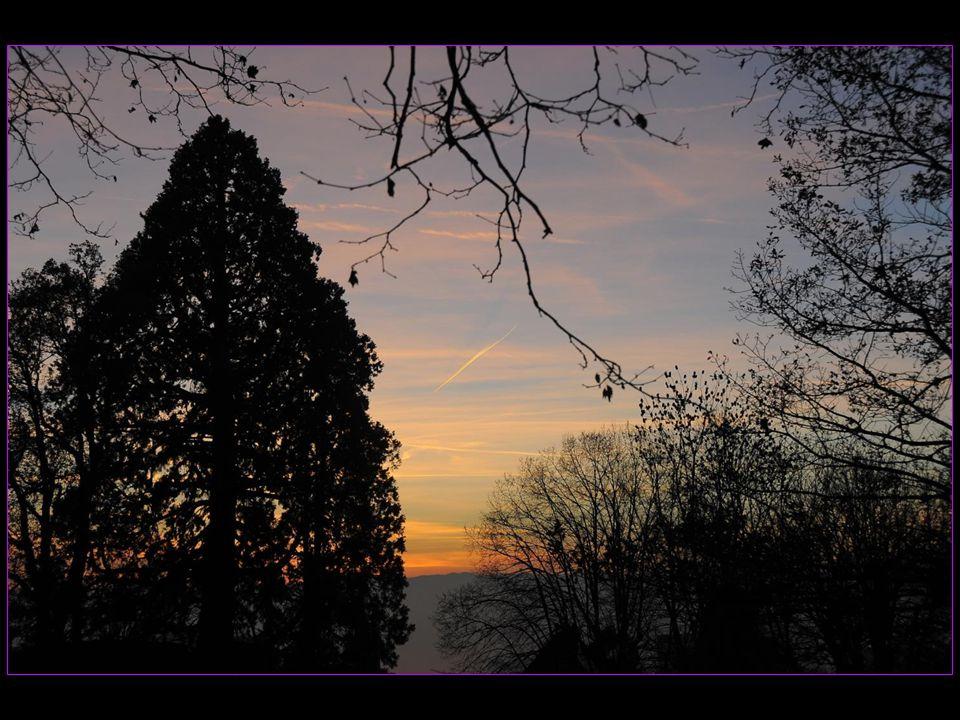 A Sauvabelin en-dessus de Lausanne à 17 heures, le 03 décembre 2013