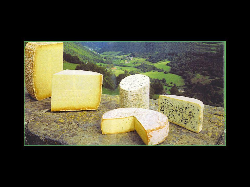 Les fromages font la fierté du Cantal