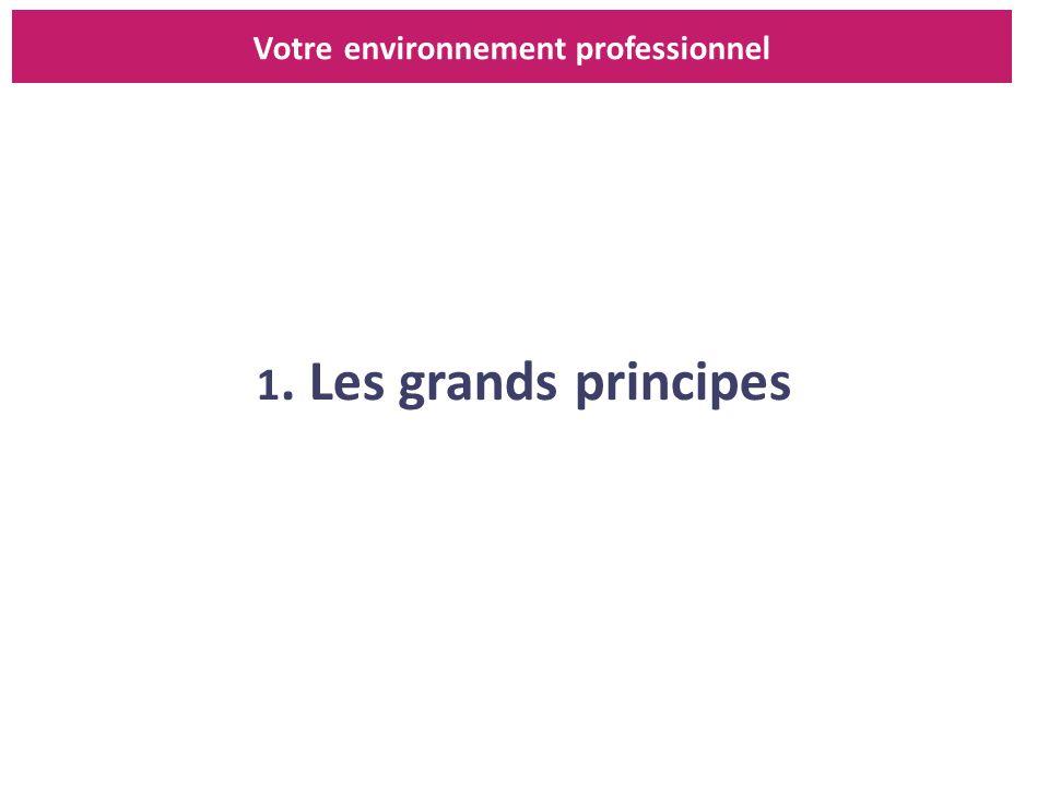 1. Les grands principes Votre environnement professionnel