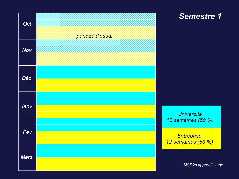 Oct Nov Déc Janv Fév Mars Semestre 1 Université 12 semaines (50 %) Entreprise 12 semaines (50 %) MCB2a apprentissage période dessai