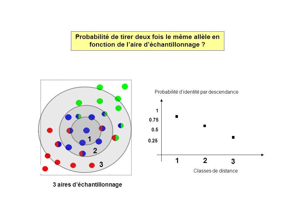 3 aires déchantillonnage Probabilité de tirer deux fois le même allèle en fonction de laire déchantillonnage ? 3 1 2 1 2 3 1 0.5 0.25 0.75 Classes de