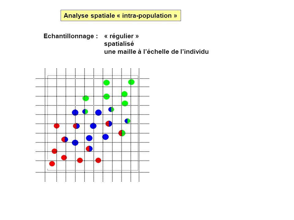 Echantillonnage : « régulier » spatialisé une maille à léchelle de lindividu Analyse spatiale « intra-population »