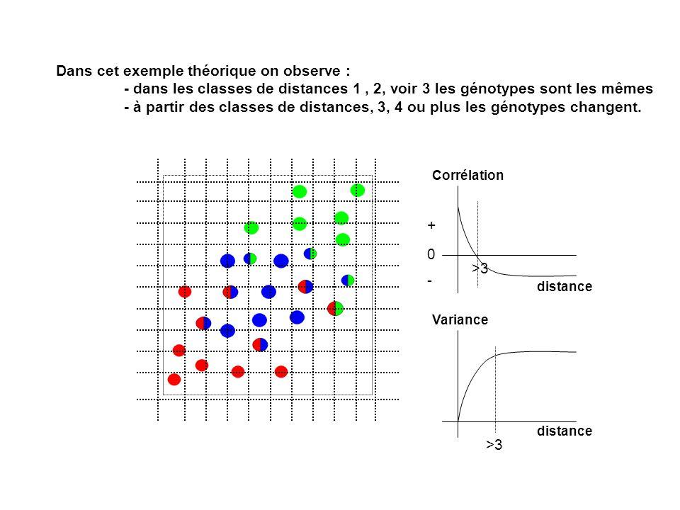 Dans cet exemple théorique on observe : - dans les classes de distances 1, 2, voir 3 les génotypes sont les mêmes - à partir des classes de distances,