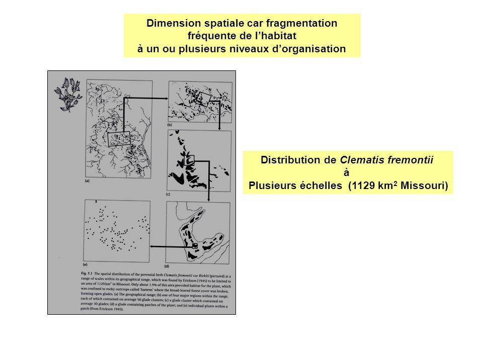 Dimension spatiale car fragmentation fréquente de lhabitat à un ou plusieurs niveaux dorganisation Distribution de Clematis fremontii à Plusieurs éche