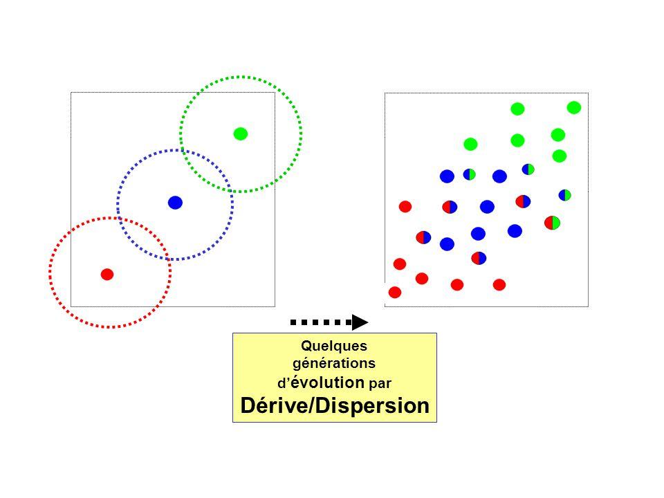 Quelques générations d évolution par Dérive/Dispersion