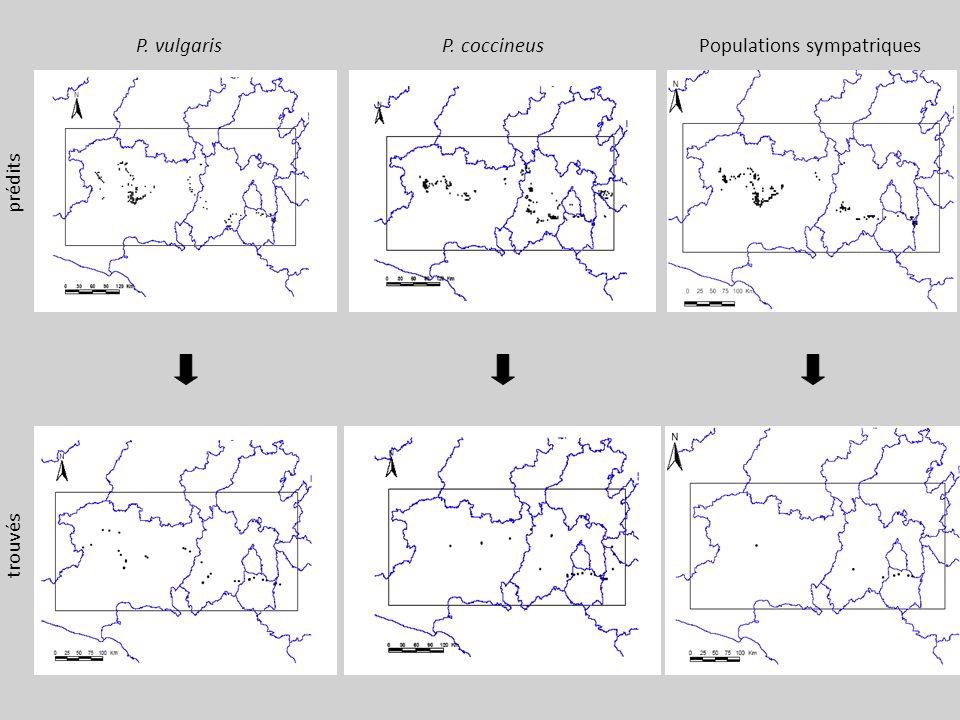 P. vulgaris prédits trouvés P. coccineusPopulations sympatriques