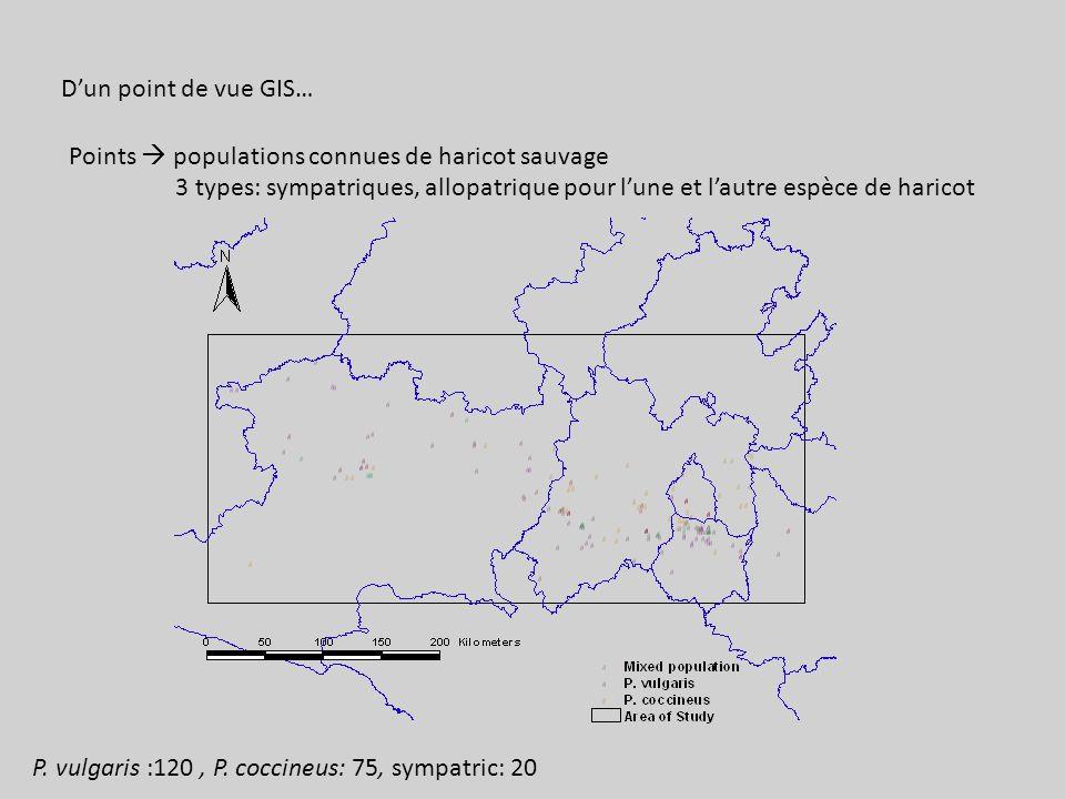 Dun point de vue GIS… Points populations connues de haricot sauvage 3 types: sympatriques, allopatrique pour lune et lautre espèce de haricot P.