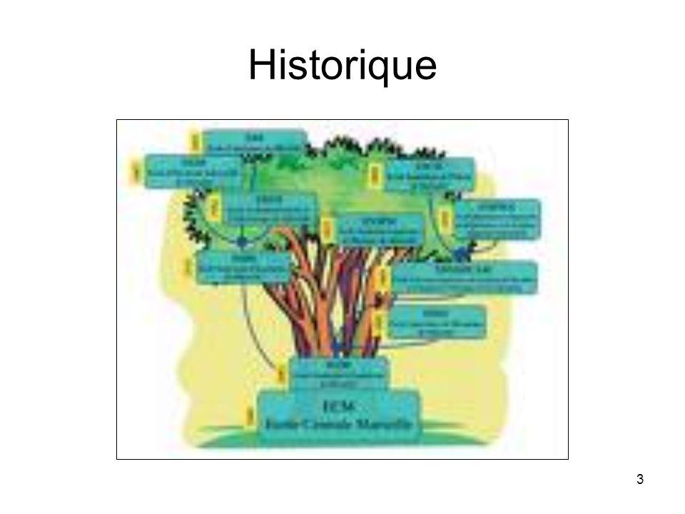 14 Les lois du Mind Mapping Règles techniques Règles de structure Autres recommandations Exemples d utilisation d une mind map La mind map comme aide à la décision –Production automatique –Pondération –Intuition –Incubation –Pile ou face…