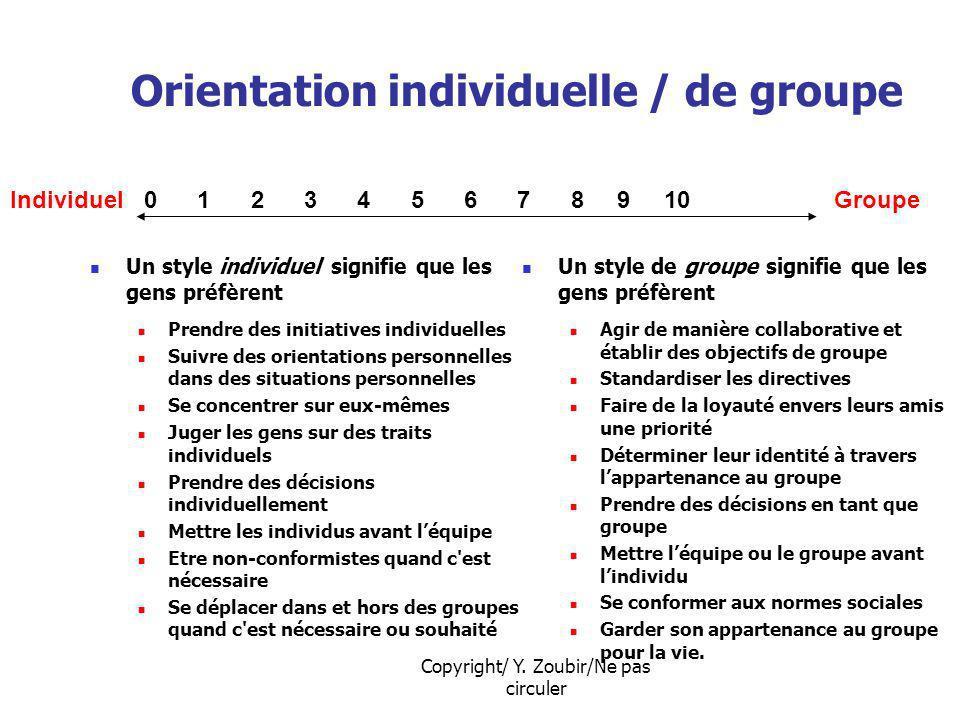 Copyright/ Y. Zoubir/Ne pas circuler Orientation individuelle / de groupe Un style individuel signifie que les gens préfèrent Prendre des initiatives