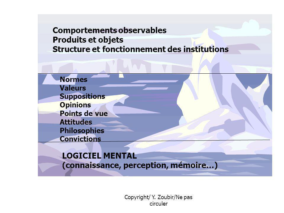 Copyright/ Y. Zoubir/Ne pas circuler Comportements observables Produits et objets Structure et fonctionnement des institutions Normes Valeurs Supposit