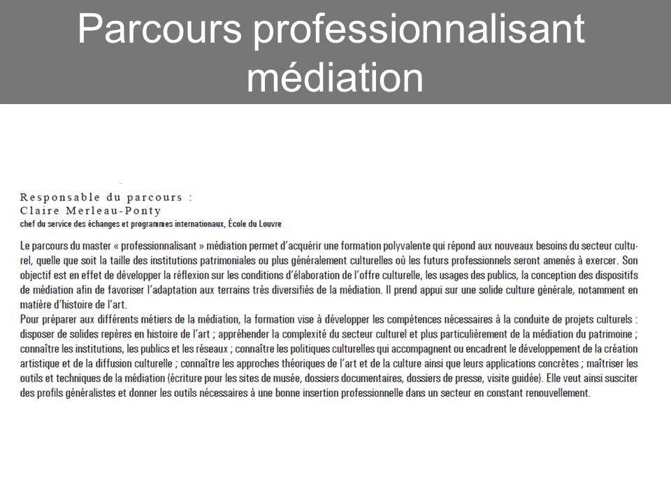 Parcours professionnalisant médiation