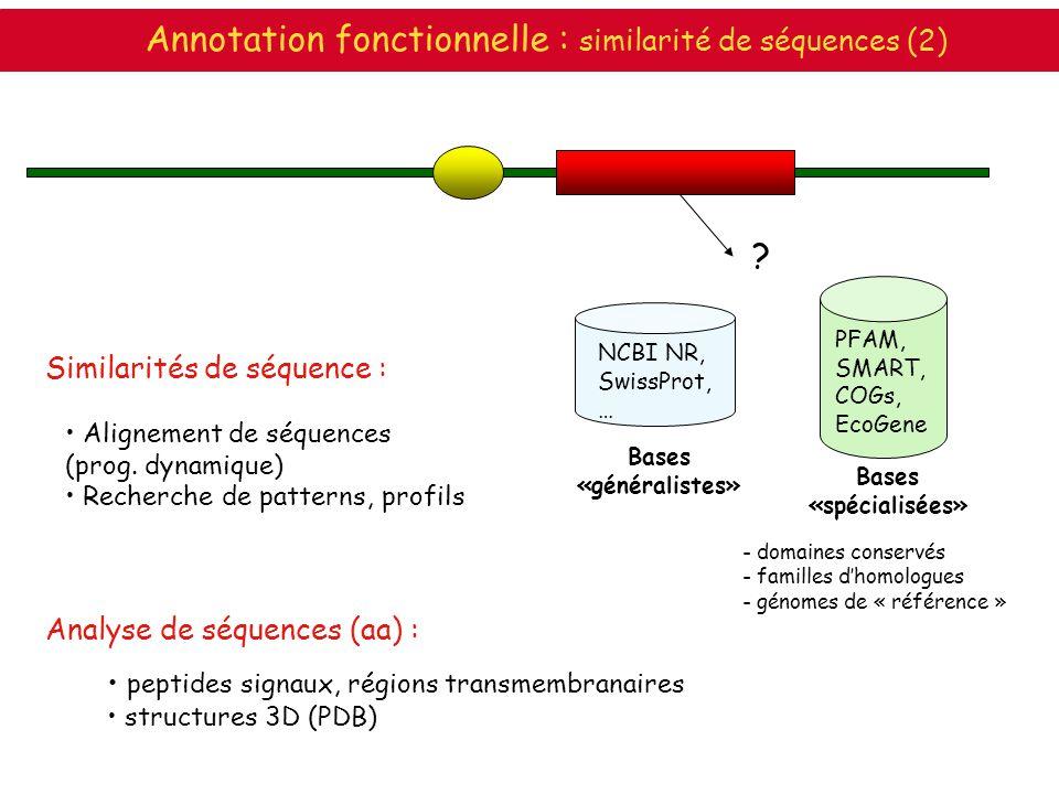 ? Annotation fonctionnelle : similarité de séquences (2) - domaines conservés - familles dhomologues - génomes de « référence » NCBI NR, SwissProt, …
