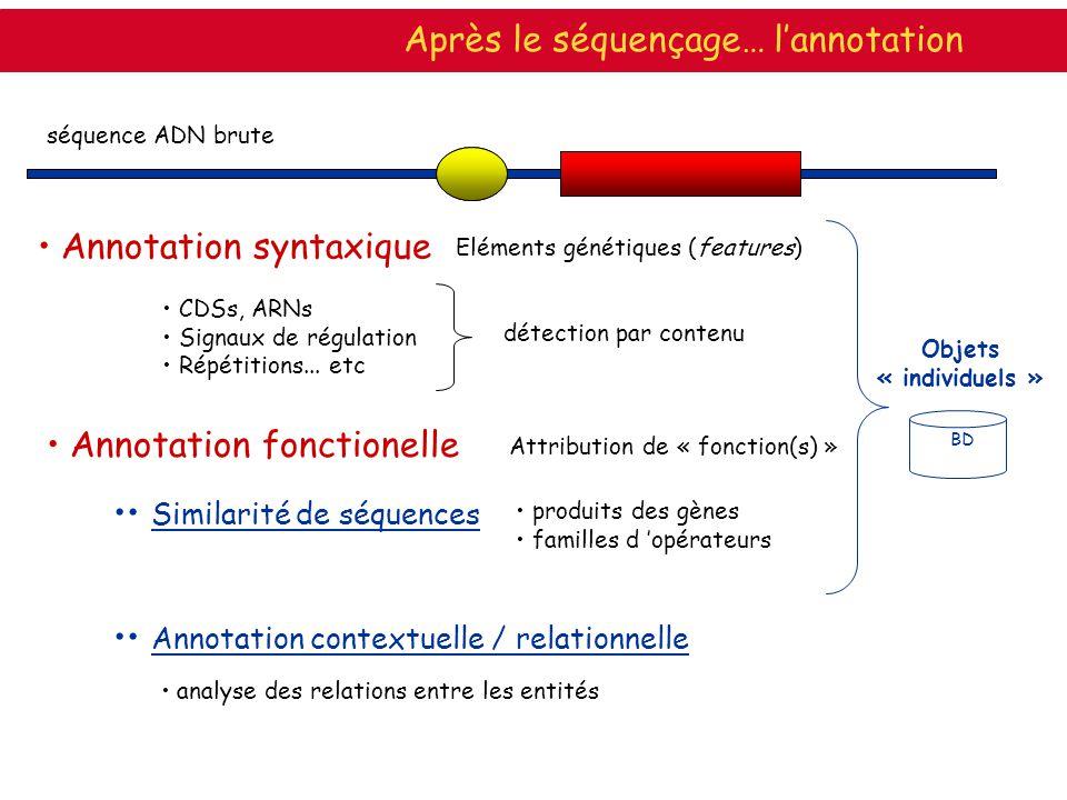 séquence ADN brute Annotation syntaxique Eléments génétiques (features) CDSs, ARNs Signaux de régulation Répétitions... etc détection par contenu Aprè