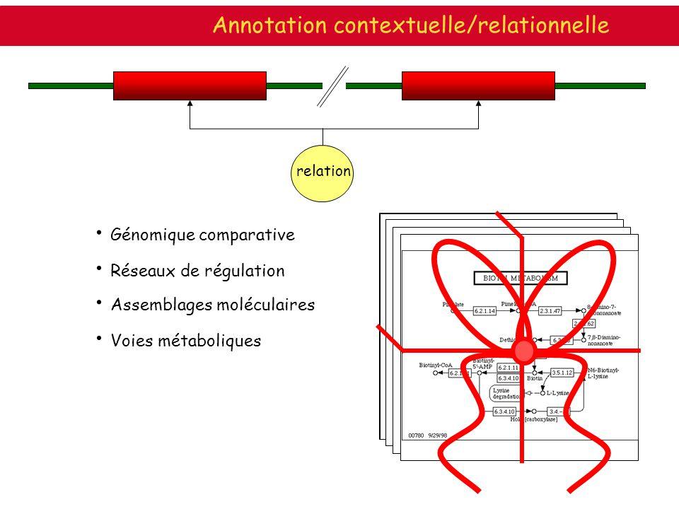 Génomique comparative Réseaux de régulation Assemblages moléculaires ABC tranporters Fichant et al. Voies métaboliques relation Annotation contextuell
