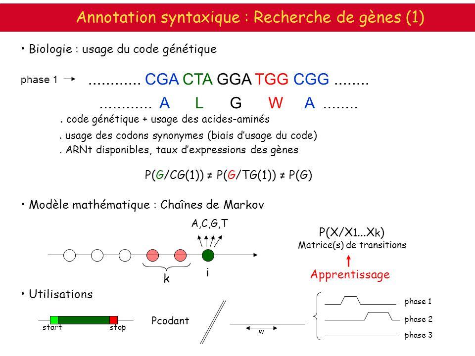 ............ A L G W A.................... CGA CTA GGA TGG CGG........ phase 1. code génétique + usage des acides-aminés. usage des codons synonymes (