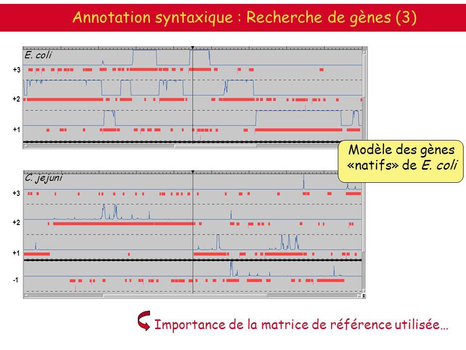 E. coli C. jejuni Modèle des gènes «natifs» de E. coli Importance de la matrice de référence utilisée… +1 +2 +3 +1 +2 +3 Annotation syntaxique : Reche