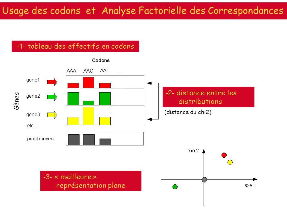 (distance du chi2) -2- distance entre les distributions -3- « meilleure » représentation plane Gènes -1- tableau des effectifs en codons gene1 gene2 g