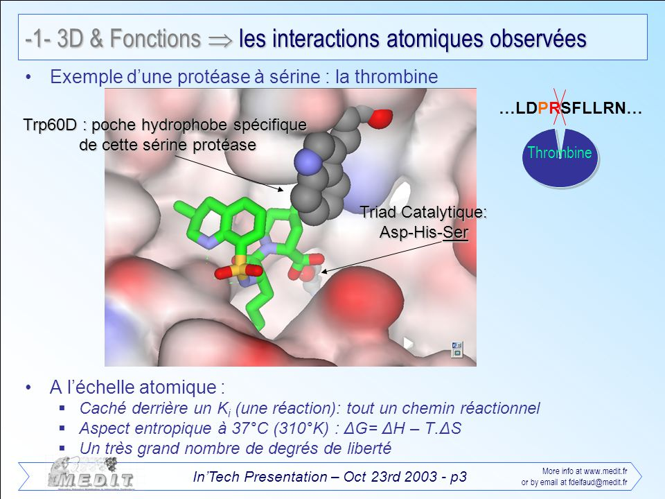 InTech Presentation – Oct 23rd 2003 - p4 More info at www.medit.fr or by email at fdelfaud@medit.fr Interaction ionique Liaison hydrogène Interaction aromatique Interaction hydrophobe -1- 3D & Fonctions Les interactions non covalentes stabilisantes