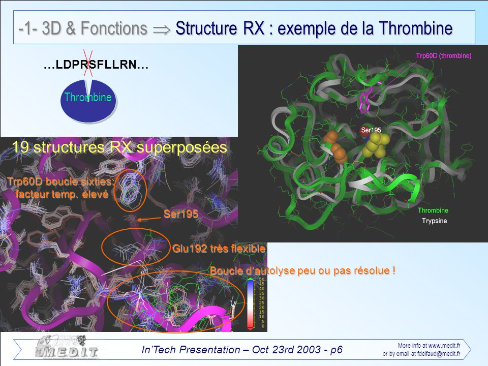 InTech Presentation – Oct 23rd 2003 - p27 More info at www.medit.fr or by email at fdelfaud@medit.fr -4- MEDIT services en informatique et contrats de recherche Molecular Modeling contract research Virtual screening including selectivity prediction 1D-2D-3D molecular descriptors to QSAR model generation Homology modeling for Proteomics or Pharmacogenomics purposes QM/MM reactivity prediction profile … Training All can be done on a linux farm or with Grid Computing Software development C++, VB, Java, Python, PERL development Corba, XML,.NET, SOAP web services MySQL, PostGreSQL databases Unix, Linux administration x10 to x1000 (or more) time faster !