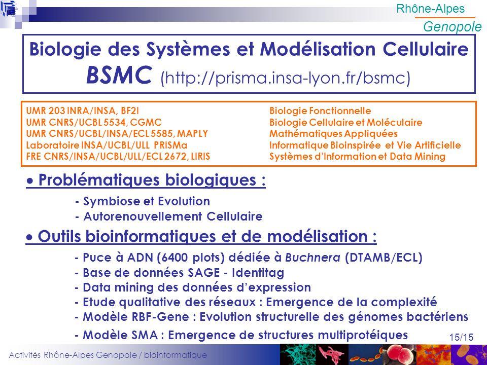 Activités Rhône-Alpes Genopole / bioinformatique Rhône-Alpes Genopole 15/15 Biologie des Systèmes et Modélisation Cellulaire BSMC (http://prisma.insa-