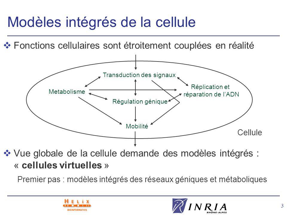 3 Modèles intégrés de la cellule vFonctions cellulaires sont étroitement couplées en réalité vVue globale de la cellule demande des modèles intégrés :