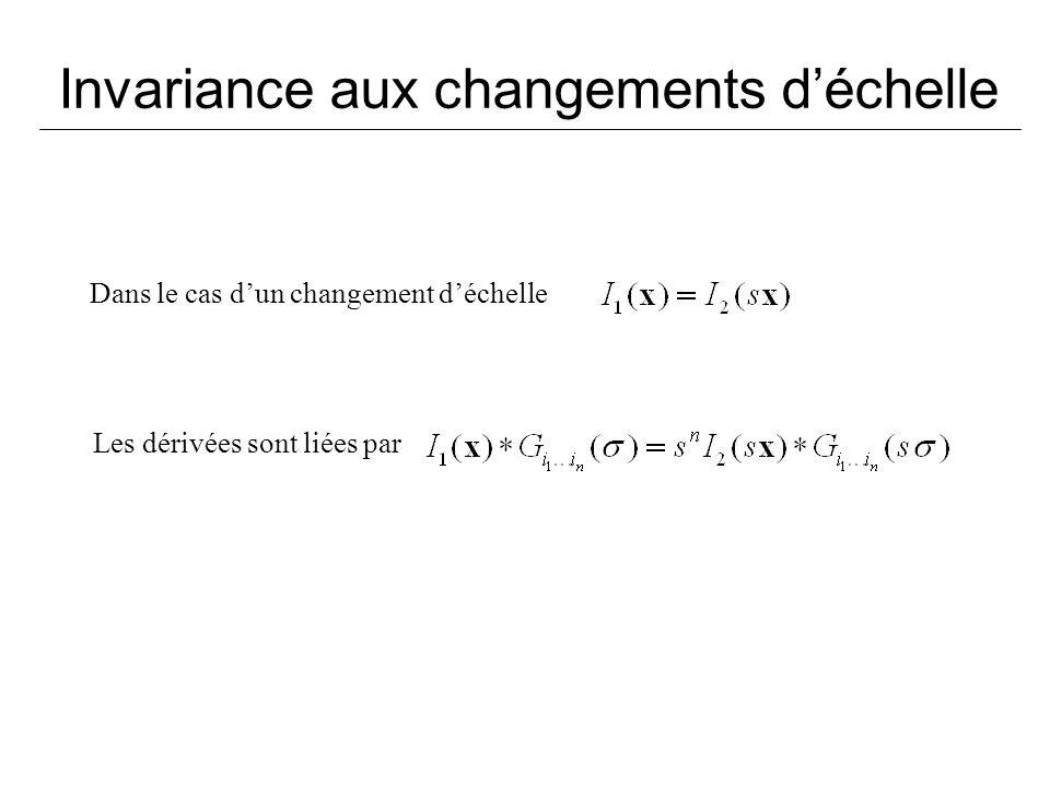 Invariance aux changements déchelle Dans le cas dun changement déchelle Les dérivées sont liées par