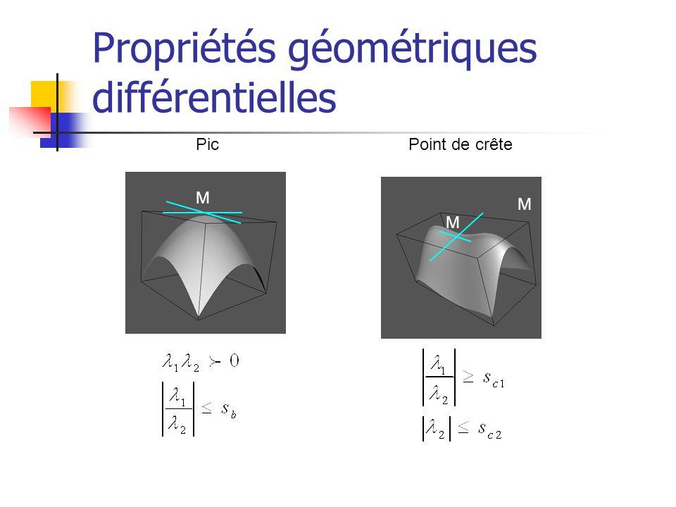 Propriétés géométriques différentielles M M M Pic Point de crête