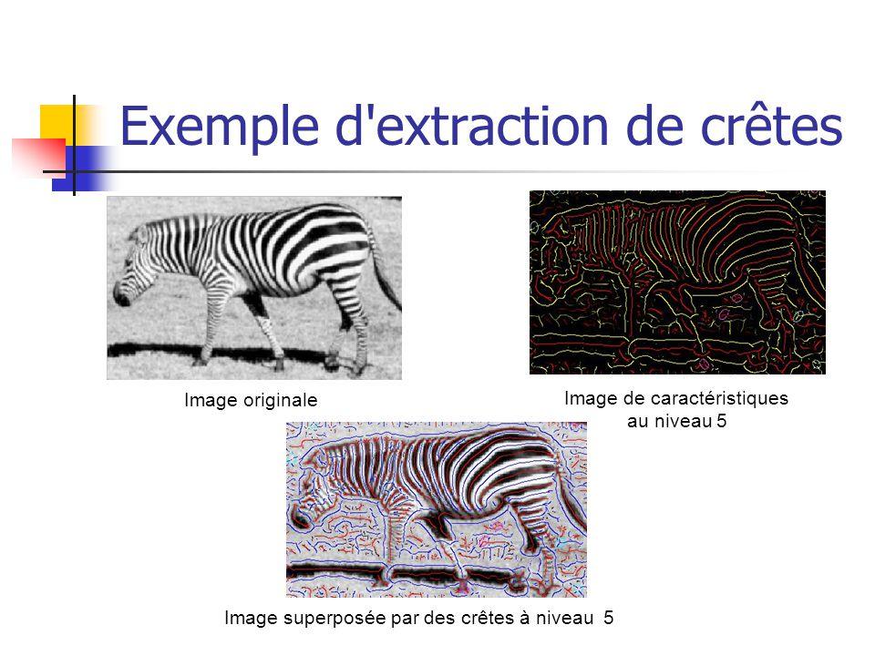 Exemple d'extraction de crêtes Image originale Image de caractéristiques au niveau 5 Image superposée par des crêtes à niveau 5