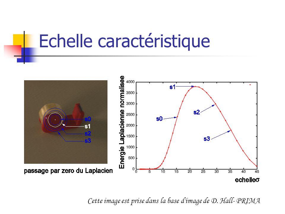 Echelle caractéristique Cette image est prise dans la base d'image de D. Hall- PRIMA