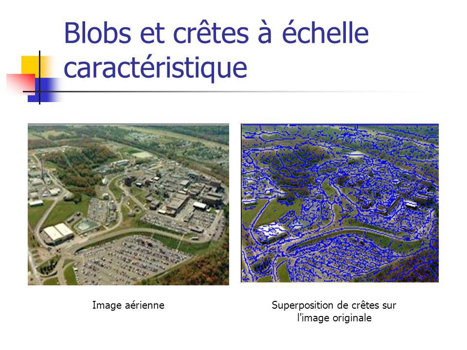 Blobs et crêtes à échelle caractéristique Image aérienneSuperposition de crêtes sur l image originale