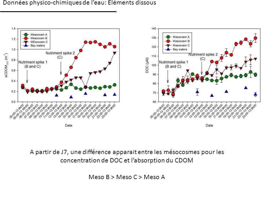 Données physico-chimiques de leau: Eléments dissous A partir de J7, une différence apparait entre les mésocosmes pour les concentration de DOC et labsorption du CDOM Meso B > Meso C > Meso A