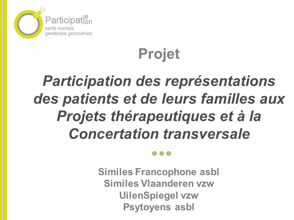 Projet Participation des représentations des patients et de leurs familles aux Projets thérapeutiques et à la Concertation transversale Similes Franco