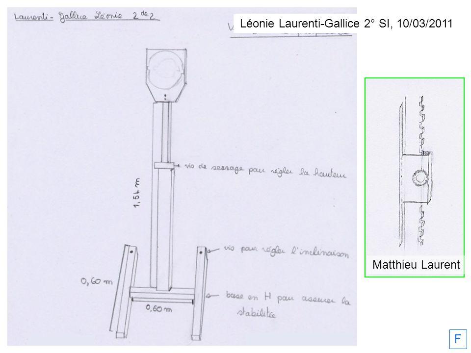 Léonie Laurenti-Gallice 2° SI, 10/03/2011 Matthieu Laurent F