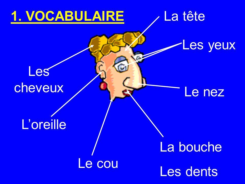 Les cheveux Le cou Les yeux Le nez Loreille La bouche Les dents La tête1. VOCABULAIRE