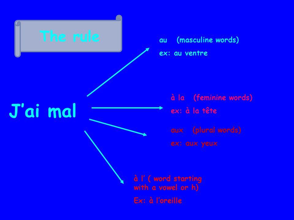 The rule Jai mal au (masculine words) ex: au ventre à la (feminine words) ex: à la tête aux (plural words) ex: aux yeux à l ( word starting with a vowel or h) Ex: à loreille