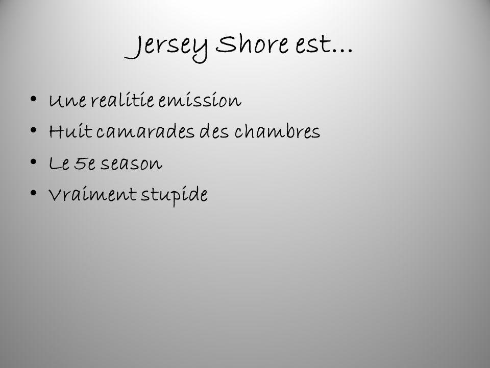 Jersey Shore est… Une realitie emission Huit camarades des chambres Le 5e season Vraiment stupide