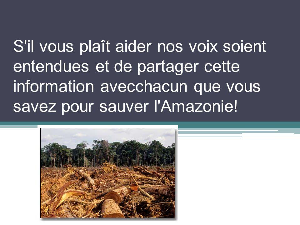 S il vous plaît aider nos voix soient entendues et de partager cette information avecchacun que vous savez pour sauver l Amazonie!