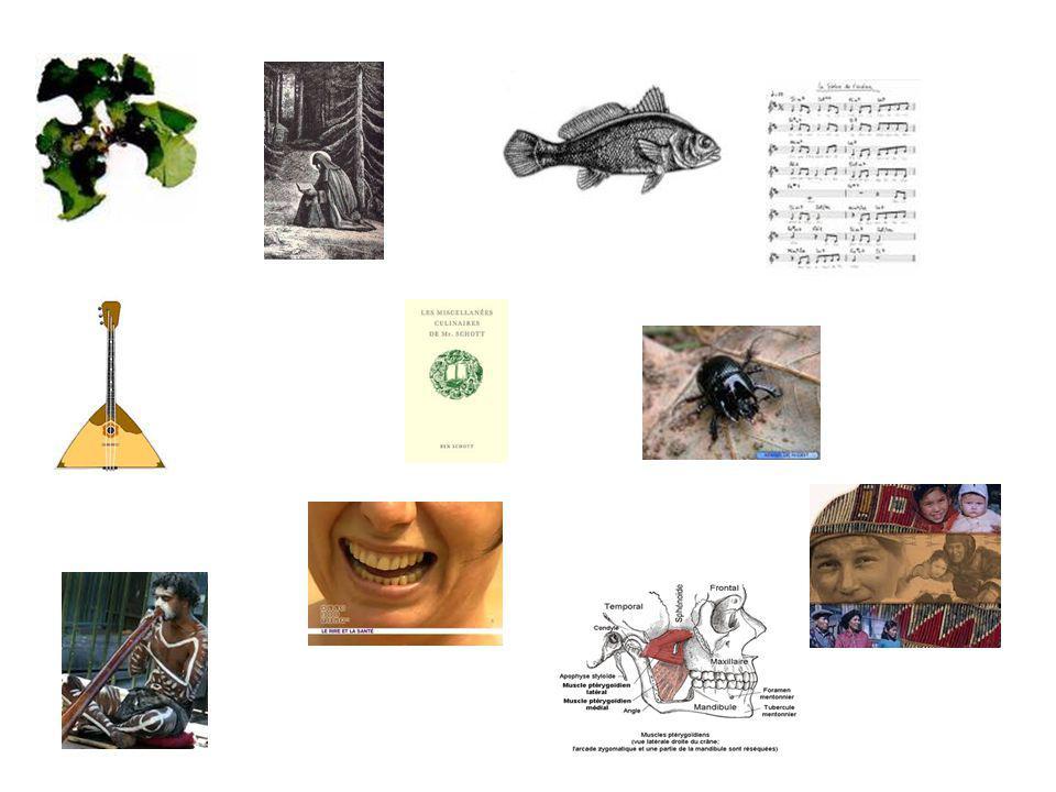 Les thallophytes LanachorèteLes muscles ptérygoïdiens LichtyophageLes zygomatiques La sciène LautochtoneLaborigèneLamphigouri Jouer en pizzicato La balalaïka