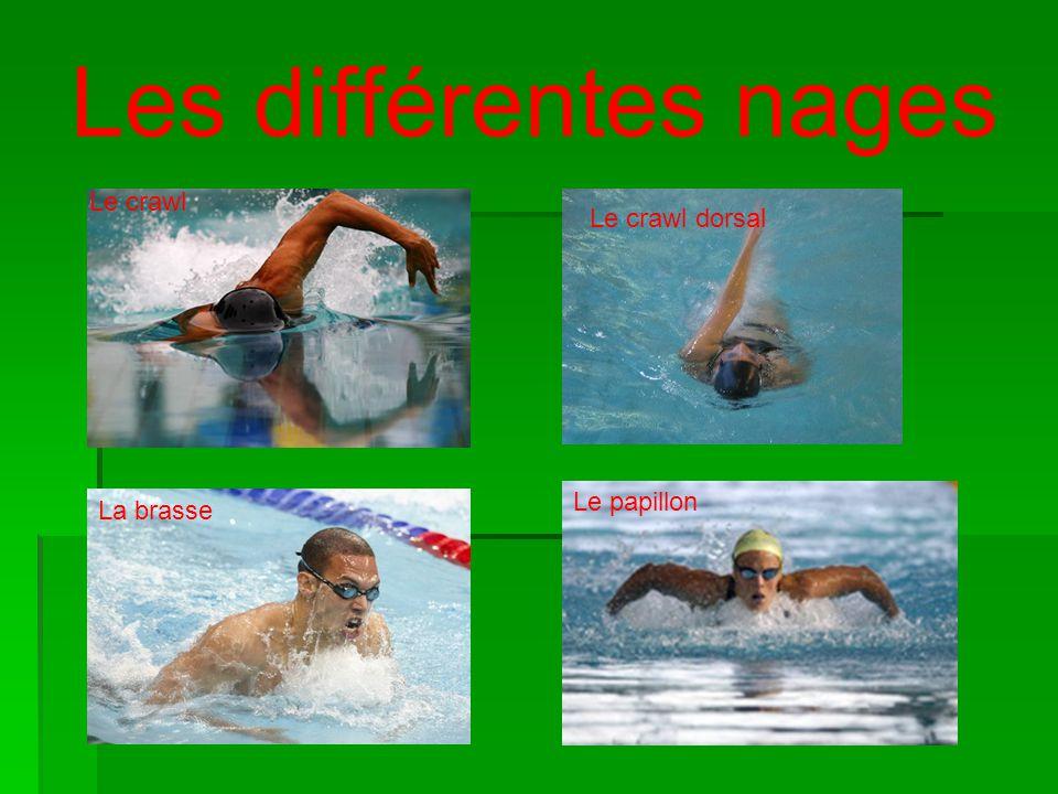 Les différentes nages Le crawl Le crawl dorsal La brasse Le papillon