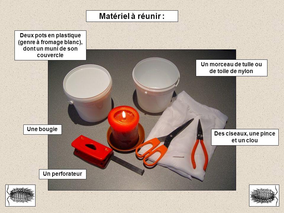Matériel à réunir : Deux pots en plastique (genre à fromage blanc), dont un muni de son couvercle Un morceau de tulle ou de toile de nylon Des ciseaux