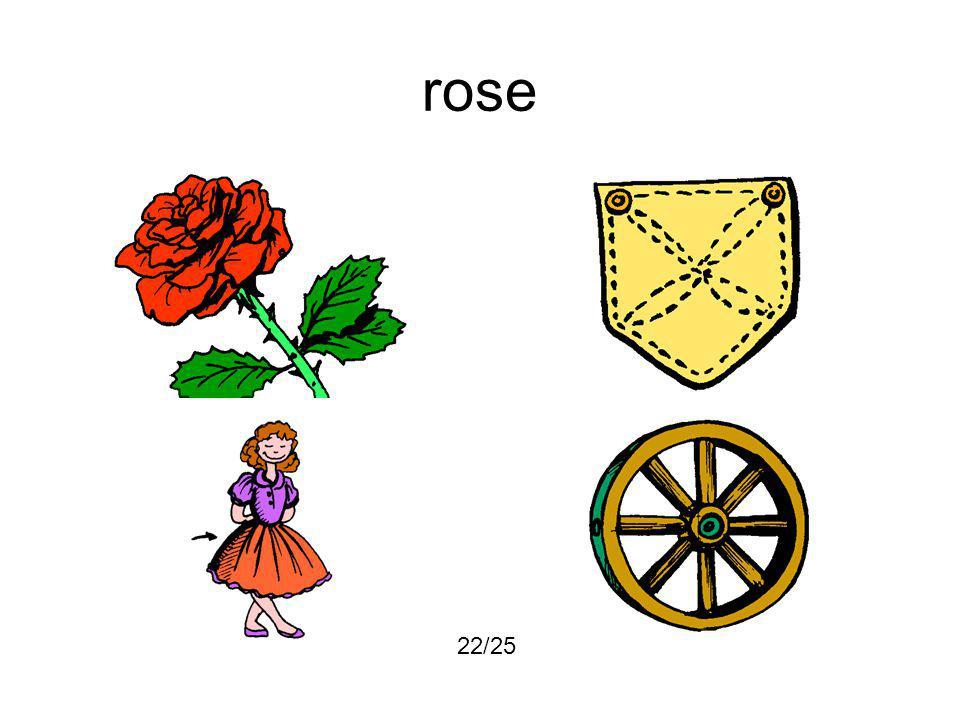 rose 22/25