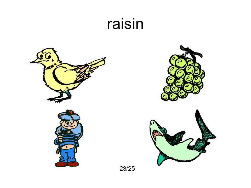 raisin 23/25