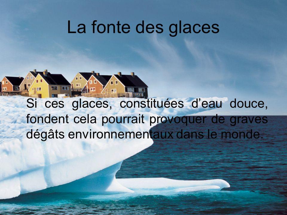 La fonte des glaces Si ces glaces, constituées deau douce, fondent cela pourrait provoquer de graves dégâts environnementaux dans le monde.