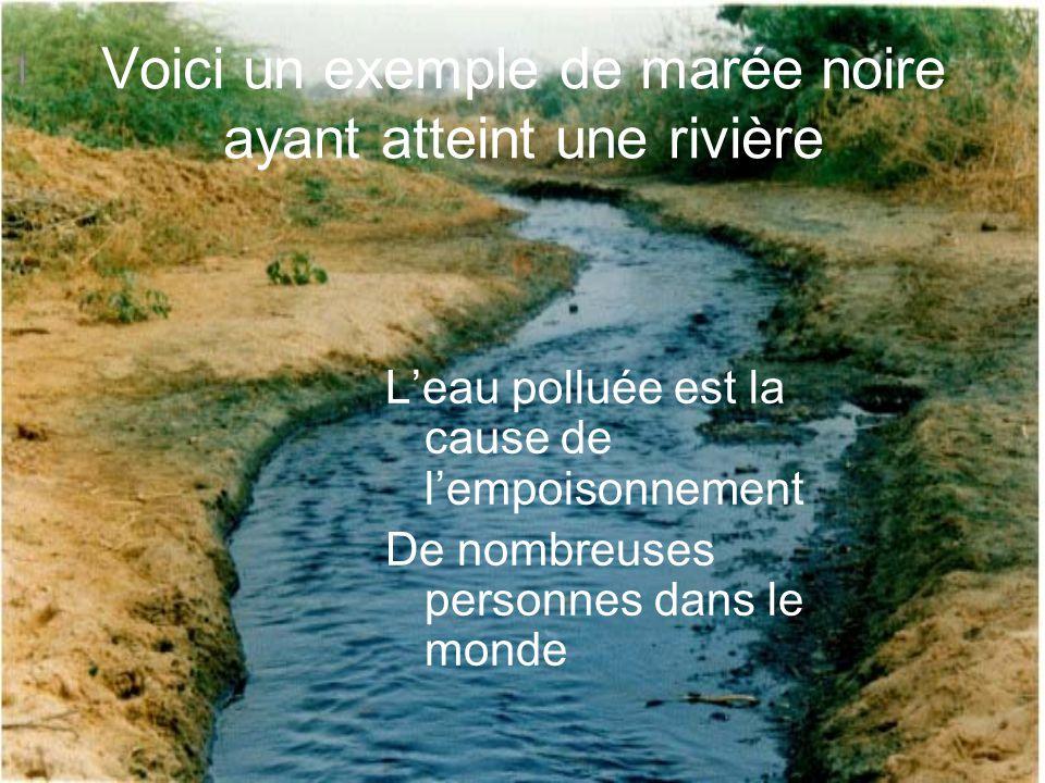 Voici un exemple de marée noire ayant atteint une rivière Leau polluée est la cause de lempoisonnement De nombreuses personnes dans le monde
