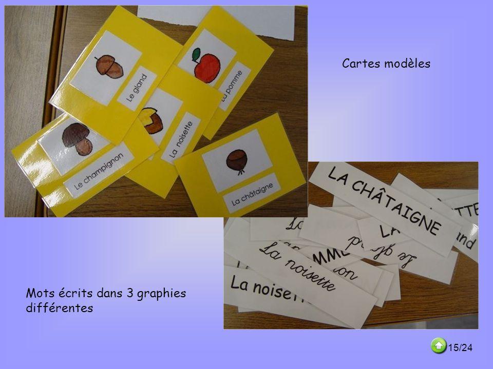 Cartes modèles Mots écrits dans 3 graphies différentes 15/24